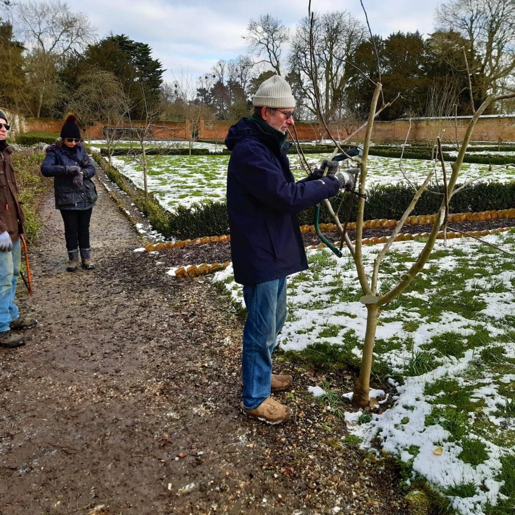 pruning 110221