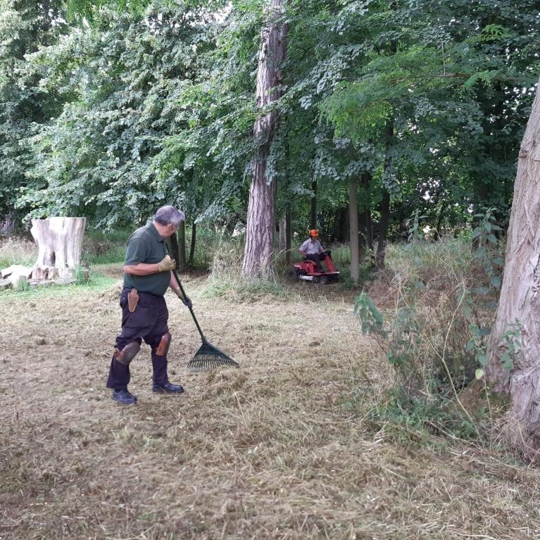 cutting the long grass